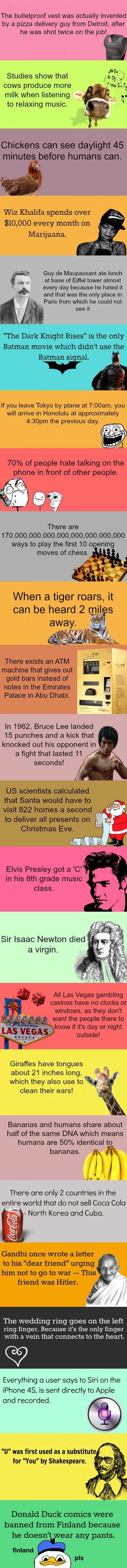 Interesting trivias