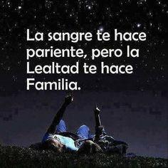 4. familia