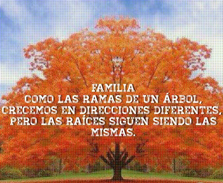 Meaningful sayings refranes significativos quierosaber - Ramas de arboles ...